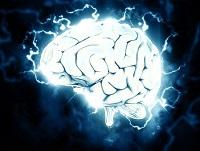 brain-1845962__340 200